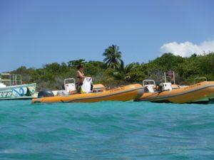 Puerto Rico Boat And Snorkling Tour Fun Captain