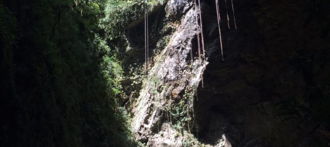 2 Caves to Explore in Puerto Rico (Things to do in Puerto Rico)