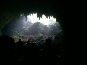 Visiting the Camuy Caves will leave you breathless when you view this massive sink hole.