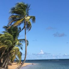 Postcard from Puerto Rico