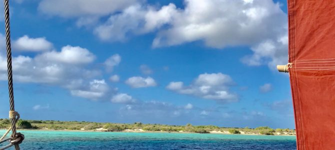 Postcard from Bonaire
