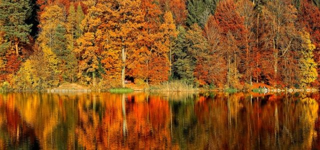 Autumn Day Trips in Putnam and Dutchess Counties