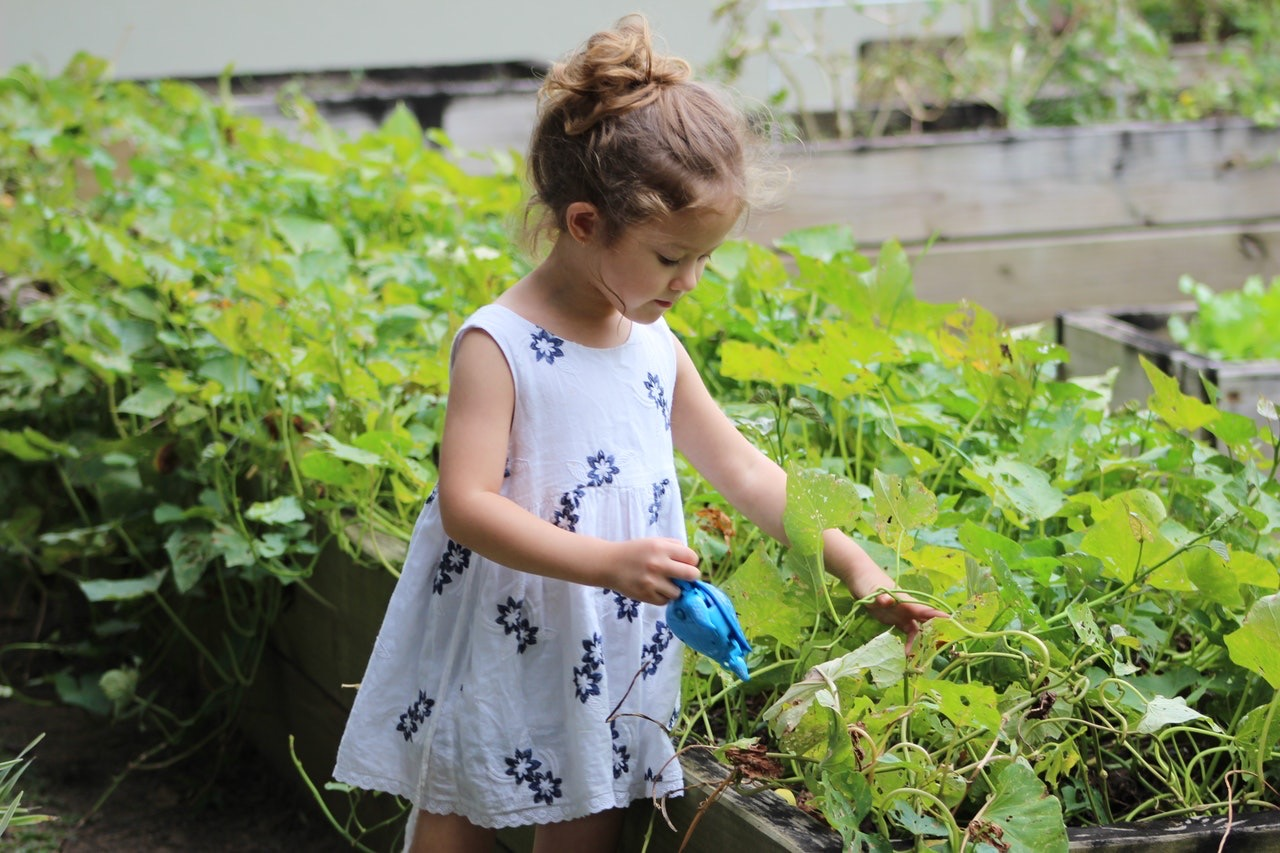 Fun Indoor and Outdoor Gardening Projects with Kids