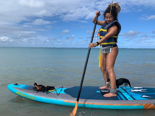 Pirate Snorkeling's Stand-up Paddleboard Rentals